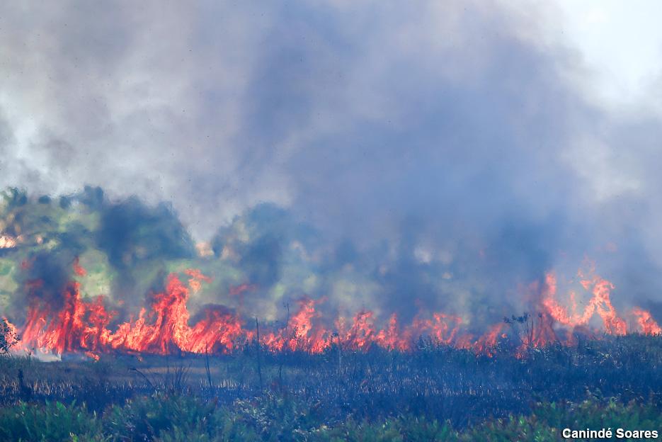 Os incêndios estão por toda parte, este no início da tarde de ontem, quarta-feira em Jenipabu.