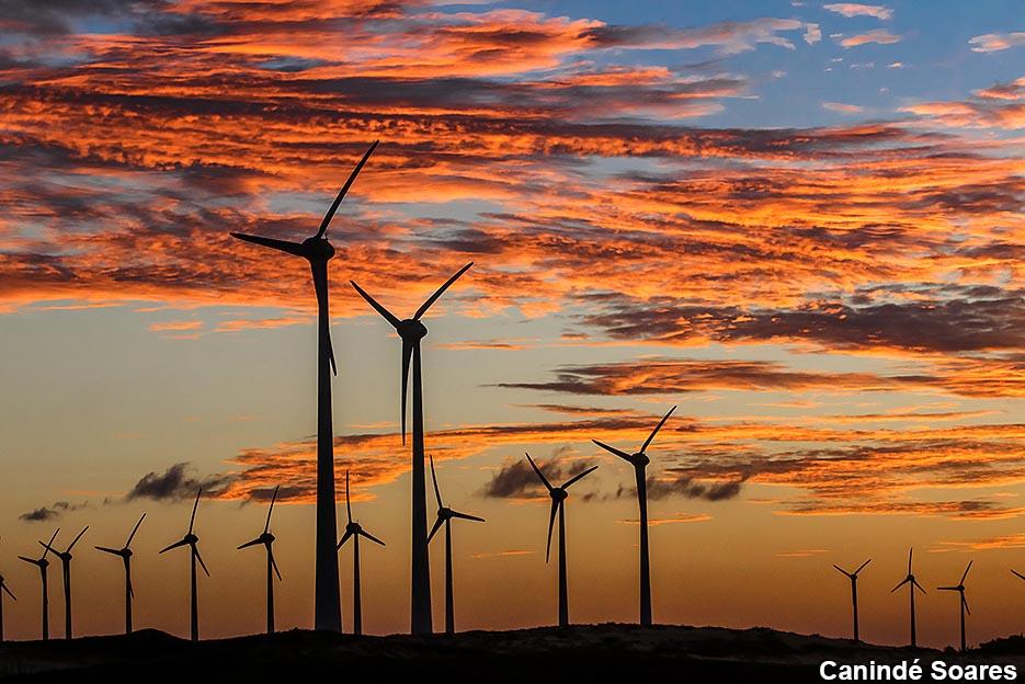 Energia eólica gerada nos 44 parques da Neoenergia será capaz de abastecer um país com população equivalente a de Portugal até 2022