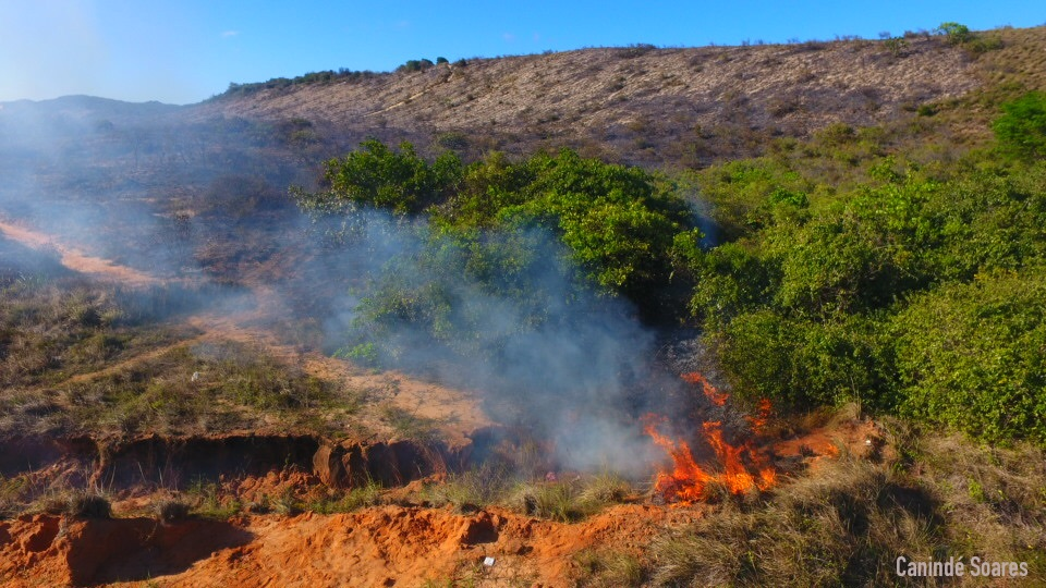 15h30. Incêndio no matagal próximo a rotatória de Cidade Satélite.